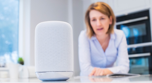 Voice ordering retail shopping via a voice assistant at home