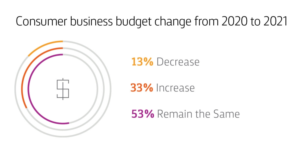 Chart: Consumer Business Budget Change from 2020 to 2021